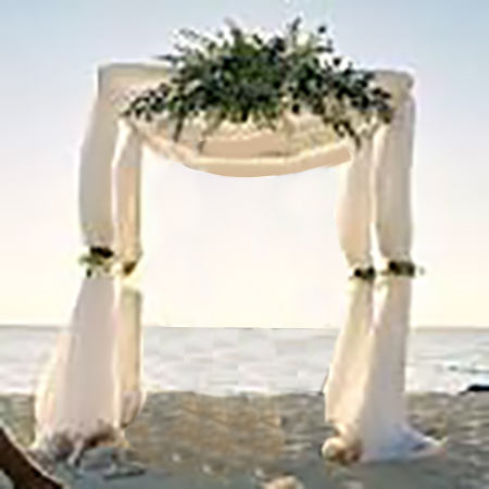 CANOPY WEDDING ARCH